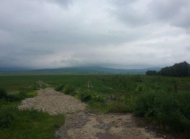 ID:9762: Teren  extravilan arabil, Nicolae Balcescu - imaginea 1