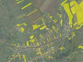 Teren agricol de vânzare, în Lechinta