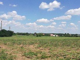Teren agricol de vânzare, în Tancabesti