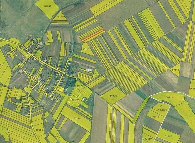 Teren extravilan agricol in Santaul Mare - imaginea 1