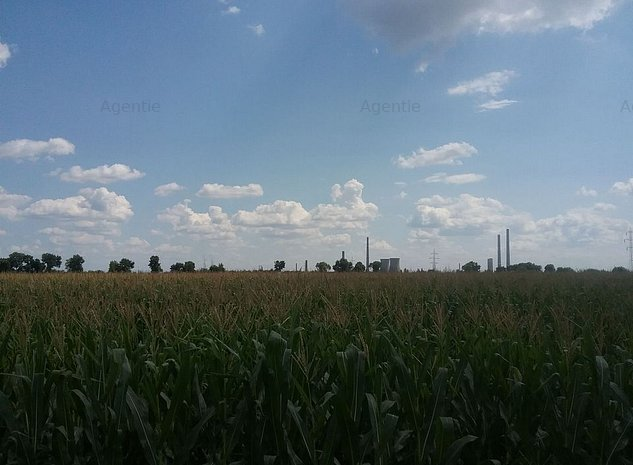 Teren intravilan agricol de 5,000 mp Ploiesti Centura de Vest - DN1 - imaginea 1