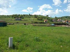 Teren agricol de vânzare, în Santana de Mures