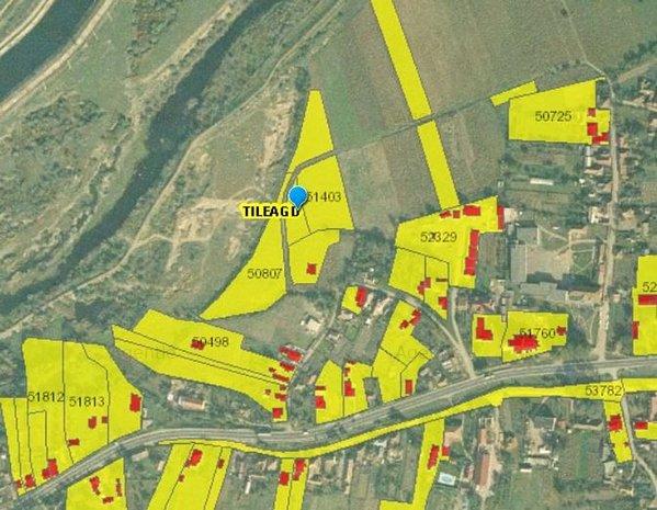 Teren Localitatea Tileagd, jud. Bihor id:17477 - imaginea 1