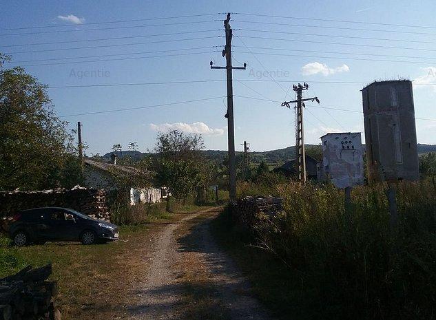 ID 12248: Ferma pui - Betesti - imaginea 1