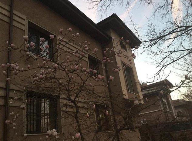 Casa Cotroceni, 11 camere - imaginea 1