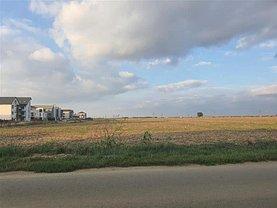 Teren agricol de vânzare, în Dumbrăviţa, zona Central