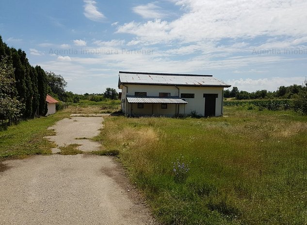 Casa 141mp, teren 6.000 mp, Cateasca - Gruiu - imaginea 1
