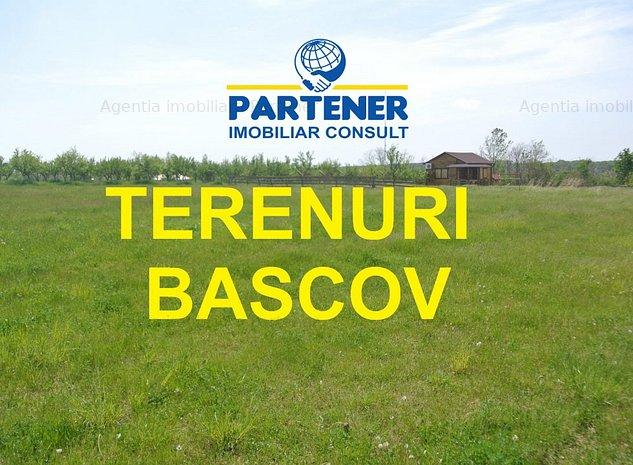 Teren Bascov, diverse suprafete - imaginea 1