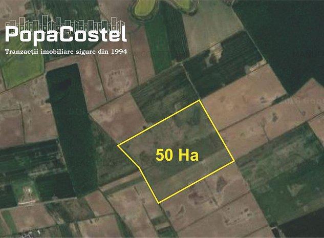 Balotesti Ilfov 50 hectare teren extravilan agricol, investitie sigura - imaginea 1