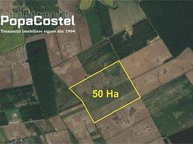 Teren agricol de vânzare în Balotesti