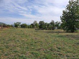 Teren agricol de vânzare, în Vălenii de Munte, zona Vest