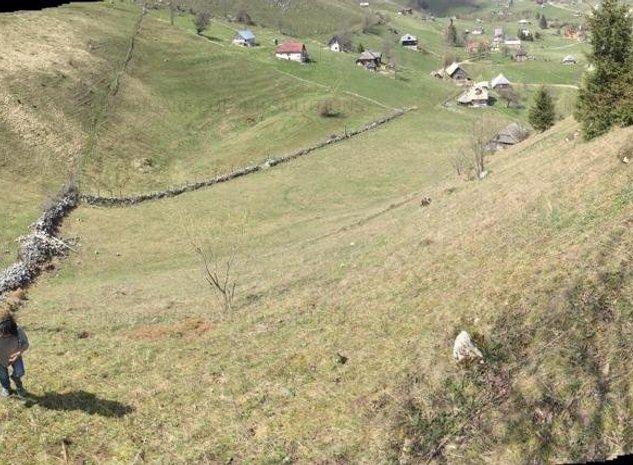 Vanzare teren Sirnea Fundata - imaginea 1