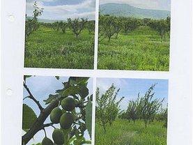 Teren agricol de vânzare, în Ploiesti, zona Central