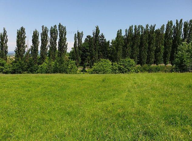 Teren zona pitoreasca - Sacele - imaginea 1
