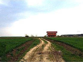 Teren constructii de vânzare, în Branesti