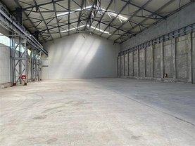 Închiriere spaţiu industrial în Bucuresti, Basarabia