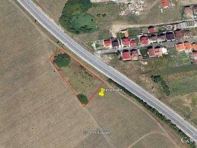 Teren agricol de vânzare sau de închiriat, în Selimbar