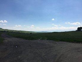 Teren agricol de vânzare sau de închiriat, în Caşolţ