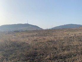 Vânzare teren investiţii în Piatra-Neamt, Ciritei