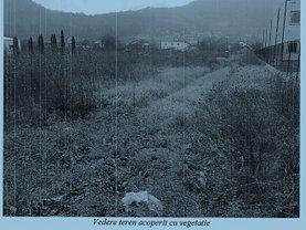 Licitaţie teren agricol, în Deva, zona Matei Corvin