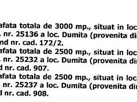 Licitaţie teren agricol, în Dumitra