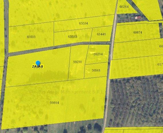 teren extravilan 6.200 mp - Zalau - imaginea 1