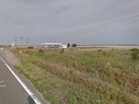 Licitaţie teren constructii, în Salonta, zona Vest