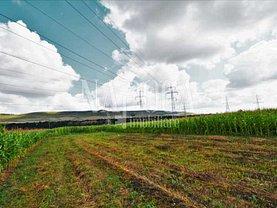 Teren agricol de vânzare, în Floresti
