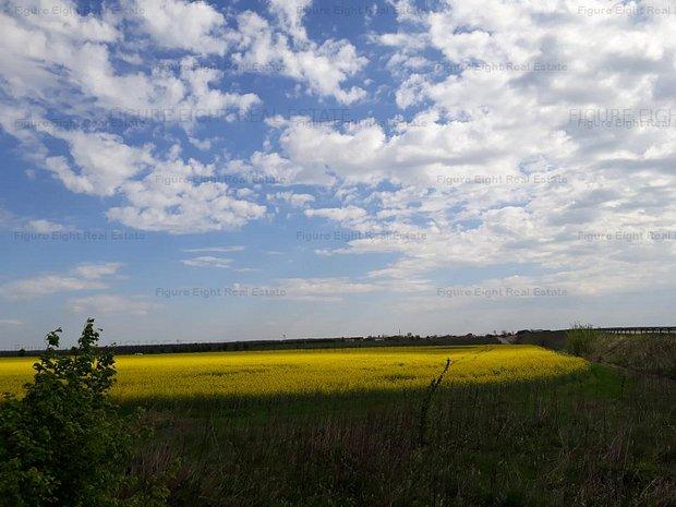 Vanzare teren agricol - imaginea 1