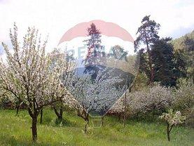 Teren agricol de vânzare, în Oradea, zona Dealuri Oradea