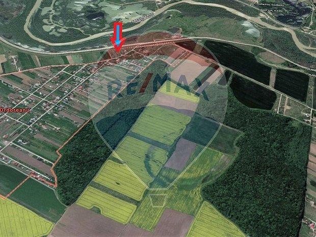 Loturi teren Soseaua Clinceni Ordoreanu - imaginea 1
