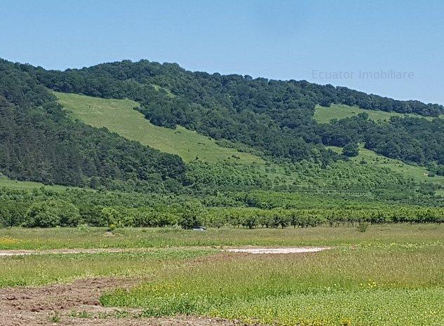 Teren intravilan Sanpetru la poalele Dealului Lempes - imaginea 1