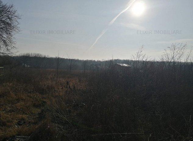 Vanzare teren 2600 mp in apropiere de padure, Snagov - imaginea 1