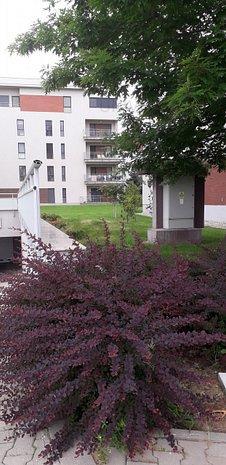 Baneasa Residence-Amasada Americii- Liber - imaginea 1