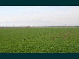 Teren agricol de vânzare, în Râmnicu de Jos
