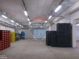 Închiriere spaţiu industrial în Raducaneni