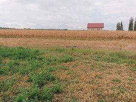Teren agricol de vânzare, în Bod