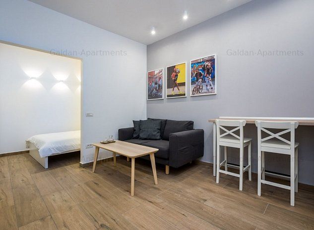 *GalDan-Apartments* Studio - Cismigiu - imaginea 1