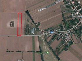 Teren agricol de vânzare în Balta Doamnei