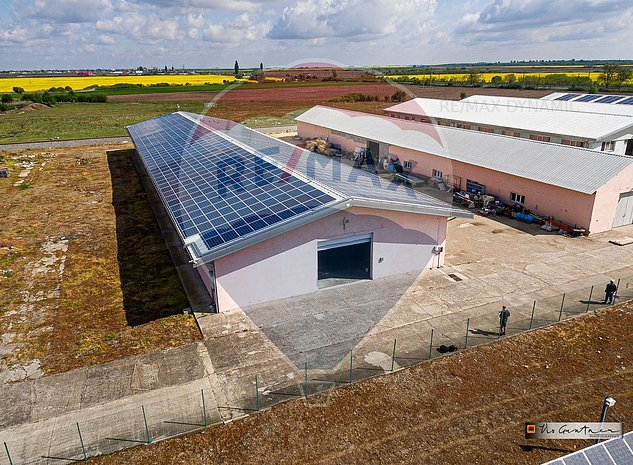 Spatiu industrial de 1,340 mp de inchiriat in Sofronea - imaginea 1