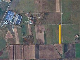 Teren agricol de vânzare, în Codlea, zona Nord-Est