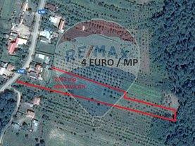 Teren agricol de vânzare, în Ceretu