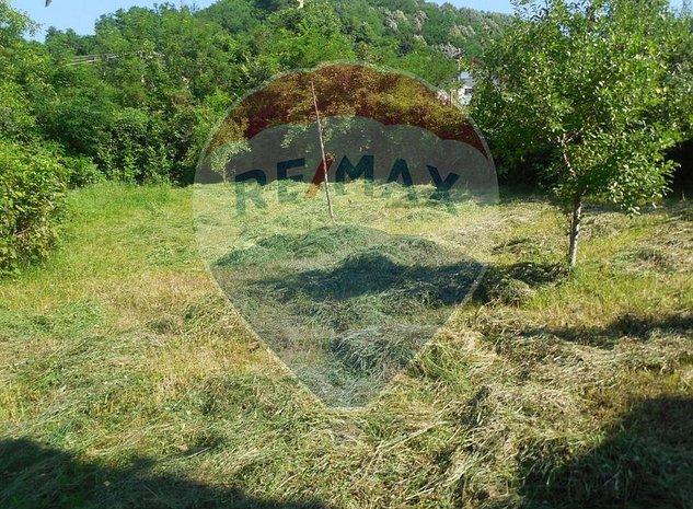 Teren Aranghel| Comision 0%| Ramnicu Valcea| - imaginea 1