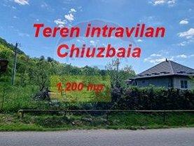 Teren agricol de vânzare, în Chiuzbaia, zona Central