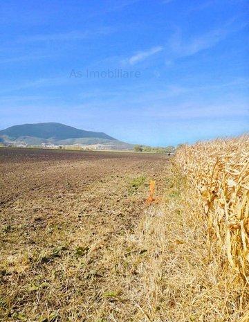 Oportunitate teren, 3 hectare, zona aeroportului Brasov - imaginea 1