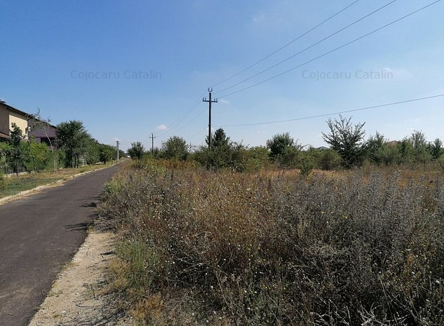Corbeaca Forest teren superb, asfalt si utilititat - imaginea 1