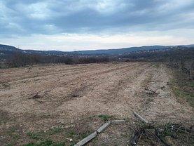 Teren agricol de vânzare, în Vişan