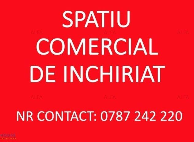 Spatiu Comercial Zona Palat 667 mp - imaginea 1