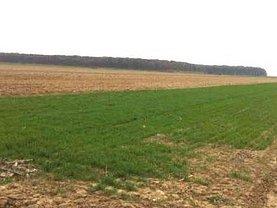Teren agricol de vânzare, în Scurtesti