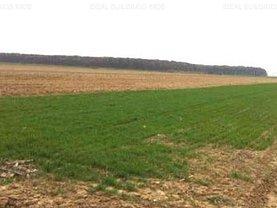 Teren agricol de vânzare în Scurtesti